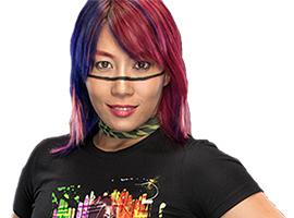 日本人最強女子格闘家ランキング