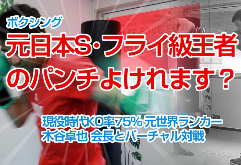 あなたはプロボクサー(KO率75%の元日本S・フライ級王者)のパンチよけれますか?バーチャルボクシング2