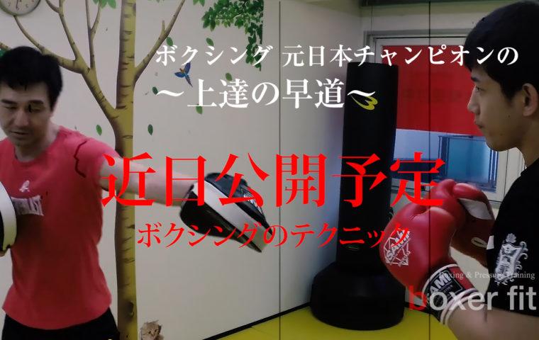 ボクシングの実践編(テクニカル)|ボクシングをはじめよう!