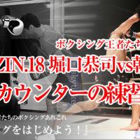 RIZIN.18 堀口恭司vs朝倉海のカウンターを徹底解説「なぜ、あのカウンターは決まったのか?」