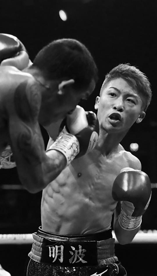 ボクシング(国内ニュース)